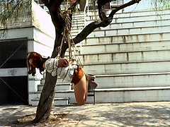 naughty chick pamela sanchez is tied up and punished in public