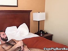 Bear spitroasted with bareback and blowjob